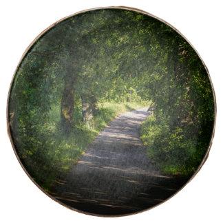 Camino romántico en el paisaje del bosque