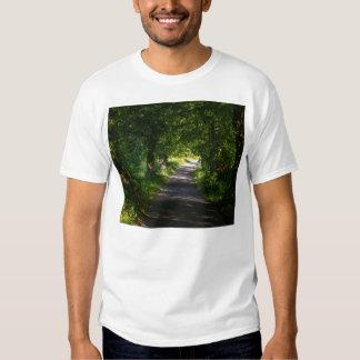 Camino romántico en el paisaje del bosque camisas
