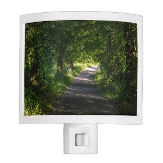 Camino romántico en el paisaje del bosque lámparas de noche