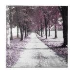 camino rosado de Forrest Gump Azulejos Cerámicos