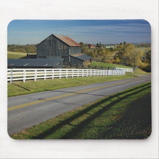 Camino rural con la región del Bluegrass de 2 Tapetes De Raton