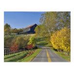 Camino rural con la región del Bluegrass de Kentuc Postales