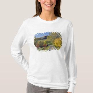 Camino rural con la región del Bluegrass de Playera