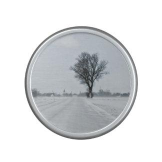 Camino rural del invierno altavoz bluetooth