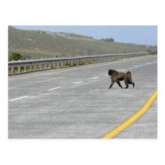 Camino solo de la carretera de la travesía del tarjeta postal