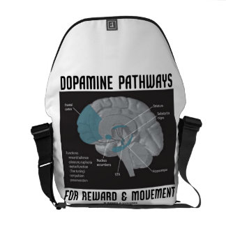 Caminos de la dopamina para la recompensa y el mov bolsa de mensajeria