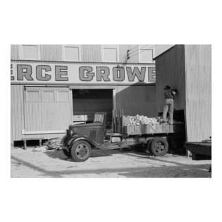 Camión viejo del pomelo, los años 30 poster