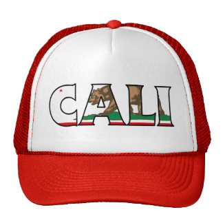 Camionero de California Gorros Bordados