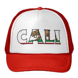 Camionero de California Gorro