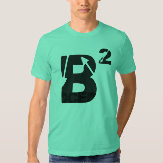 camisa b2