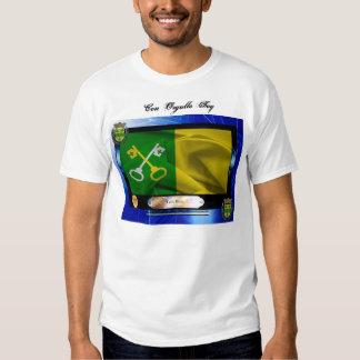 Camisa Bandera Toa Baja T-Shirt