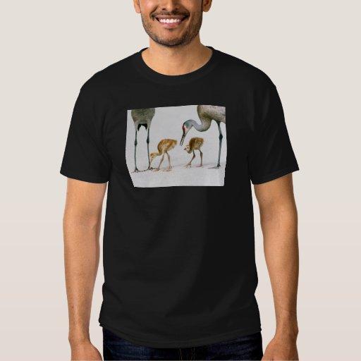 Camisa de Famiy de la grúa de Sandhill