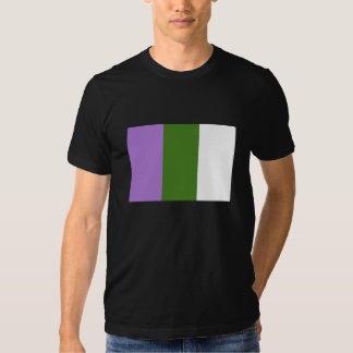 Camisa de la bandera de Genderqueer