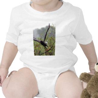 Camisa de la cometa de caracol de los marismas #1