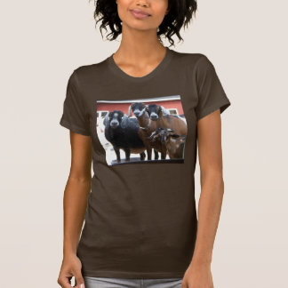 Camisa de la familia de la cabra