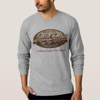 Camisa de la quebrada de Galt
