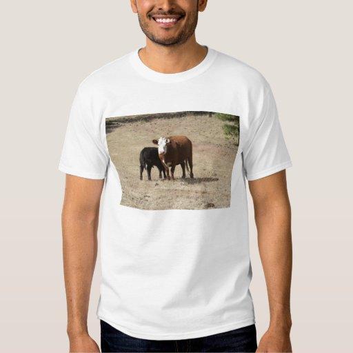 Camisa de la vaca y del bebé