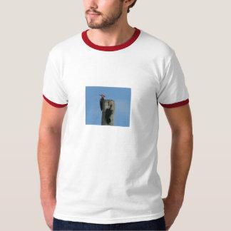 Camisa de las pulsaciones de corriente de Pileated