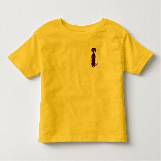 Camisa de Sidney