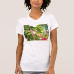 Camisa del Agastache del pájaro del tarareo