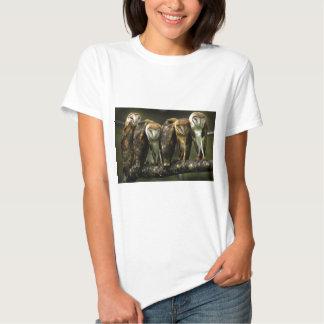 Camisa del blanco de las lechuzas comunes