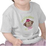 Camisa del cumpleaños del mono de la MOD de la niñ