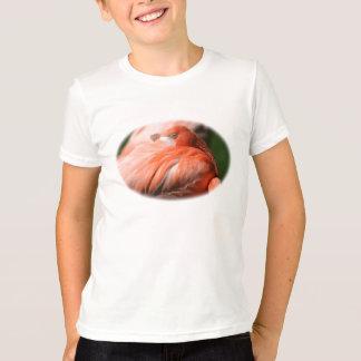 Camisa del flamenco de los niños