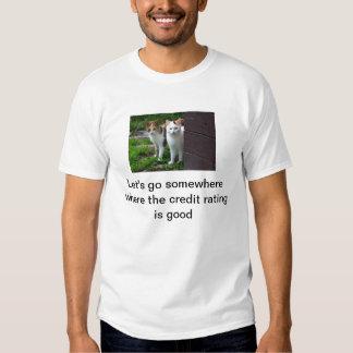 camisa del grado de solvencia