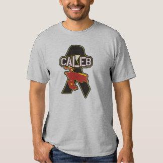 Camisa del gris del tributo de Caleb Moore