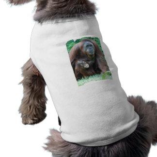 Camisa del mascota de la familia del orangután playera sin mangas para perro
