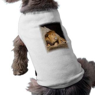 Camisa del mascota de la foto del león camisa de perro