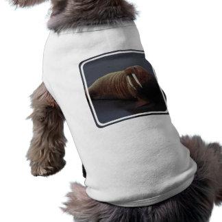 Camisa del mascota de la morsa playera sin mangas para perro