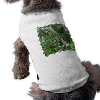 Camisa del mascota del lagarto que sube ropa de perro