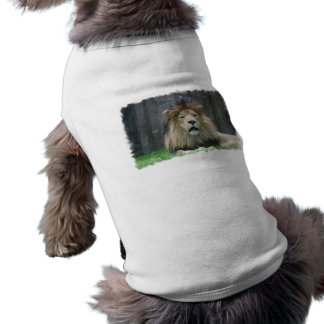 Camisa del mascota del león camisetas de mascota