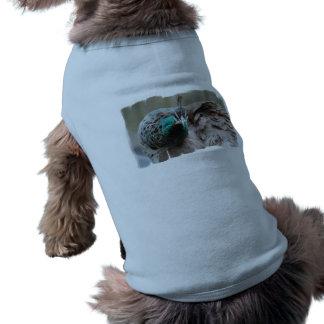 Camisa del mascota del pavo real de Brown Ropa Para Mascota
