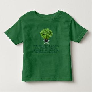 Camisa del niño de la ALBAHACA