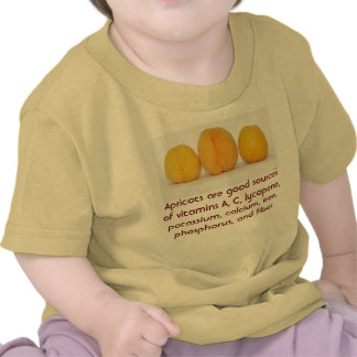 Camisa del niño de los albaricoques