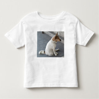 Camisa del niño del perro que espera