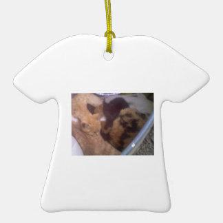 Camisa del oranment del catnap de DNatureofDTrain Ornamento Para Reyes Magos