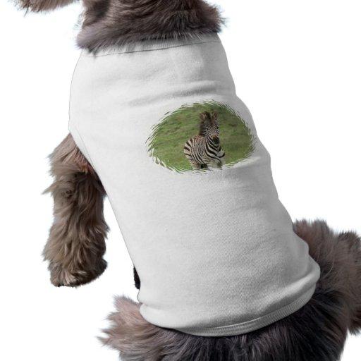 Camisa del perro de la cebra del bebé playera sin mangas para perro