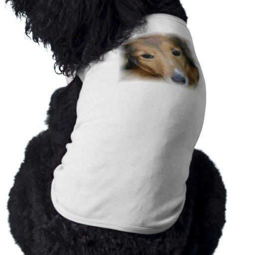 Camisa del perro del collie camisa de perro