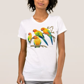 Camisa del punto del jersey de las señoras de los