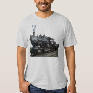 Camisa del tren