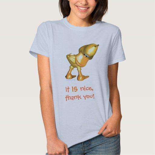 Camisa del vago del pato