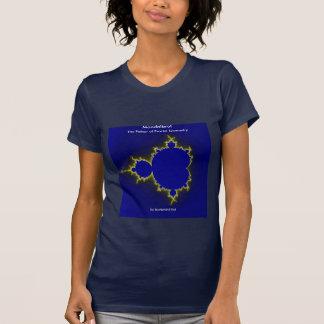 Camisa determinada del fractal de Mandelbrot