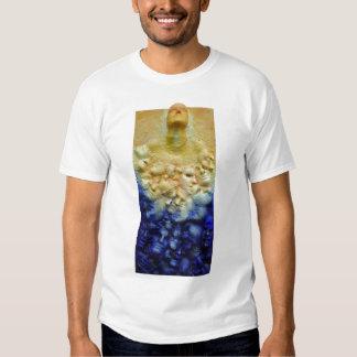 Camisa disidente
