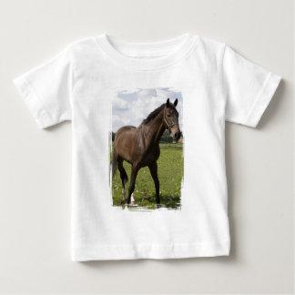Camisa excelente del niño del caballo