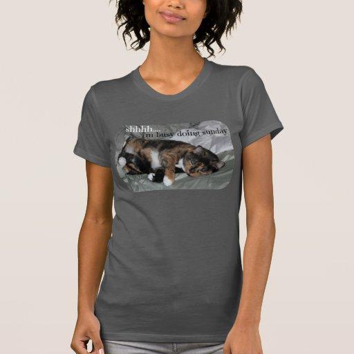 ¡Camisa linda del gato, shhh, estoy ocupado el hac