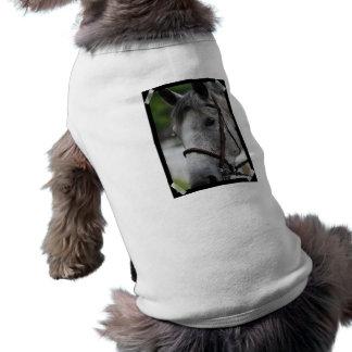 Camisa linda del mascota del caballo del Appaloosa Ropa De Perros