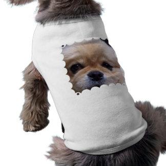 Camisa linda del mascota del perrito de Pekingese Ropa Macota